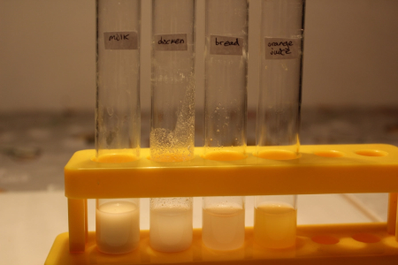 test tubes labeled yellow rack